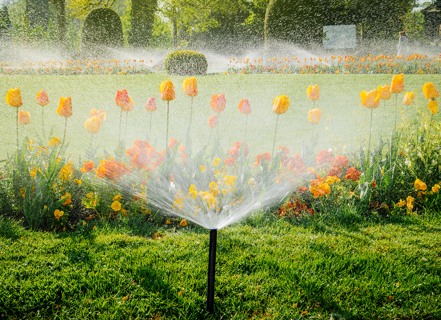 sprinkler system services in Denver, CO, Thornton, CO and the South Metro Area